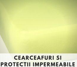CEARCEAFURI SI PROTECTII PATUT